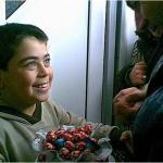 """Η ζωή στην """"Κιβωτό""""(2001)"""